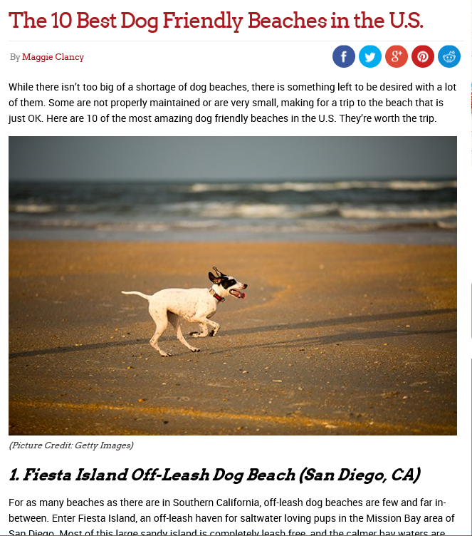 And While You Re Here Check Out Our View Of How Fiesta Island S Leash Free Area Should Be Developed Versus The City